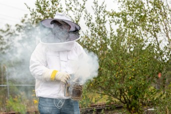 Environmental program generates a lot of buzz at OIB installation