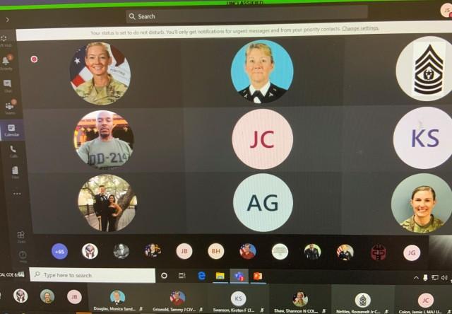 Screen shot virtual participants.