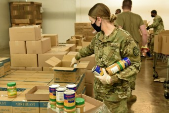 Michigan National Guard fills vital need for food delivery