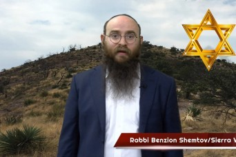 A lesson from a tree with Rabbi Shemtov