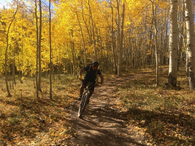 A bicyclist rides down a trail in Crested Butte, Colorado. (Photo via Marc Cattapan)