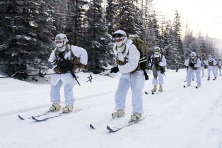 Soldiers participate in a skijoring exercise at Joint Base Elmendorf-Richardson, Alaska, Jan. 27, 2021.