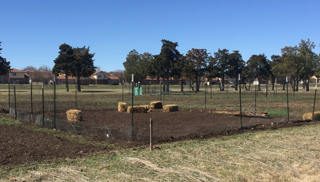 Fort Sill garden plots are available on a first-come, first-served basis at Sportsmen Services. The plots are southeast of Freedom Elementary School.