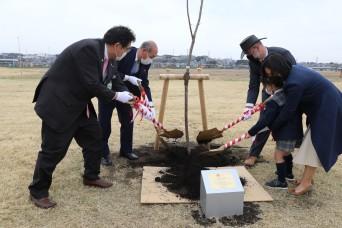 U.S., Japan plant cherry blossom tree on Sagami Depot as symbol of friendship