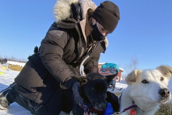 Army veterinarians support sled dogs competing in Iditarod