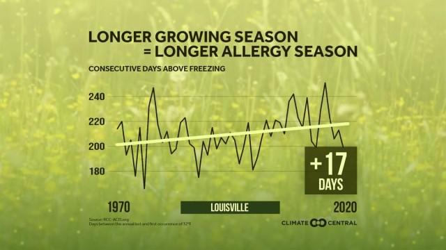 Tree allergy season is in full bloom at Fort Knox