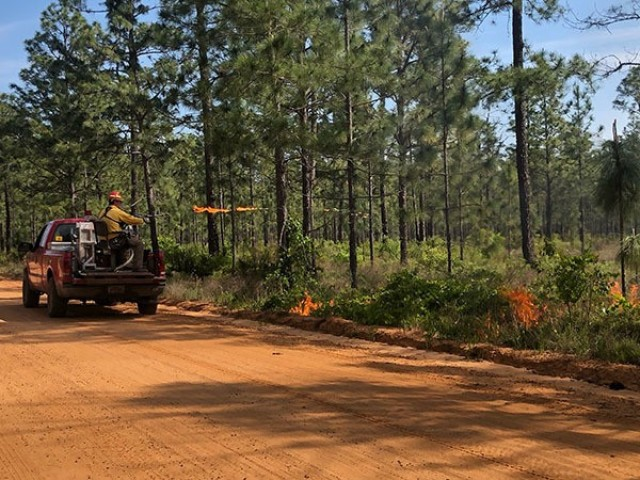 An equipment operator with the Fort Stewart-Hunter Army Airfield Forestry Branch ignites a baseline fire upwind along a dirt road in the installation's training area, April 23 on Fort Stewart.