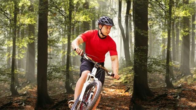 Mountain Biking in the Park