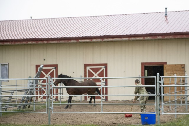 Soldiers volunteer at Wyoming ranch for Operation Remount