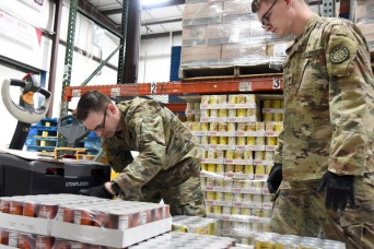 Army public health experts discuss food insecurity in the ranks
