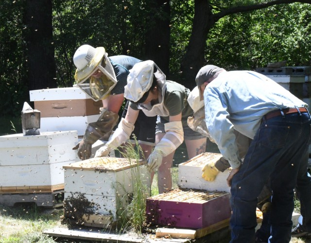 Veterans and active-duty service members toured the bee farm and workshop at Churchill Farms in Watertown on May 24, and received hands-on instruction in bee farming. The tour was made possible through Cornell Cooperative Extension of Jefferson County and the Farm OPS program (Photo by Mike Strasser, Fort Drum Garrison Public Affairs)