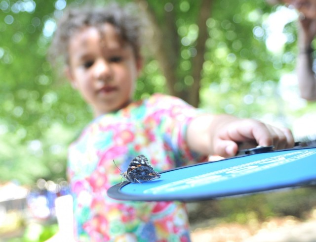 Natalie Booker, 5, balances a butterfly on a fan during the Butterfly Release event May 26 at the Army Community Service Memorial Garden. The Bookers were present to honor and remember father and husband, Petty Officer 1st Class Corwyn Booker Jr., who died in 2019.