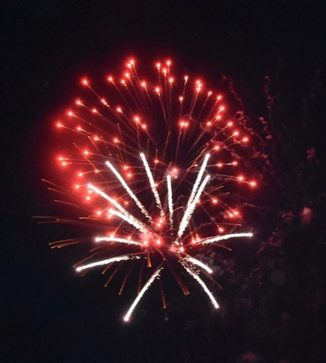 The firework display lit up the sky during the US Army Garrison Wiesbaden July 4 celebration.
