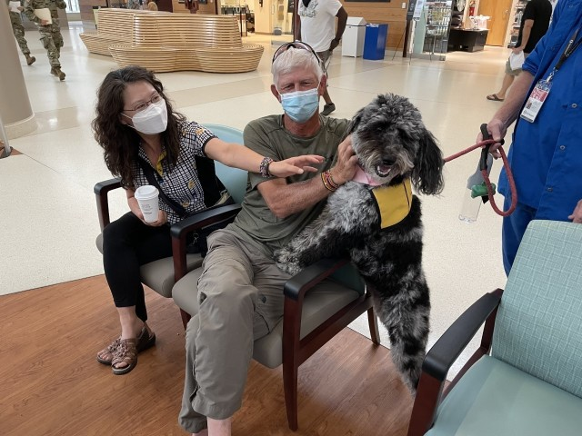 Martin Army Community Hospital's newest therapy dog Heidi visits with beneficiaries waiting in the pharmacy.