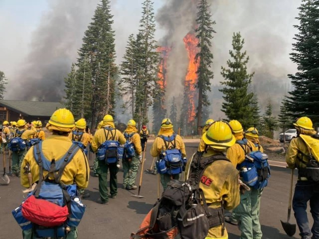 Trees burn within eyesight of a California National Guard hand crew with Joint Task Force 578 during the Dixie Fire in Northern California Aug. 16, 2021. The task force is part of the mutual aid system in support of CAL FIRE. (U.S. Army National Guard photo by 1st Sgt. Harley Ramirez)