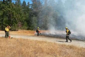 Good fires prevent bad ones