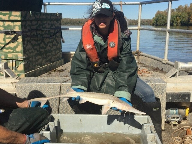 U.S. Army Corps of Engineers, Kansas City District, River Engineer Gladys Figueroa Toro poses with a pallid sturgeon during a Missouri River boat trip early in her employment with USACE.