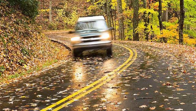 Leaves, less daylight, animals among autumn driving hazards